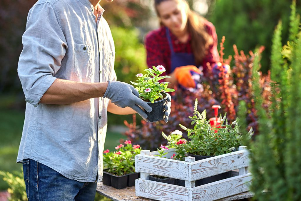 couple working their garden with gloves on